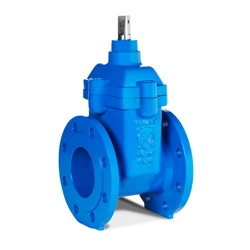Series 31 Gate Valve DN50-DN400